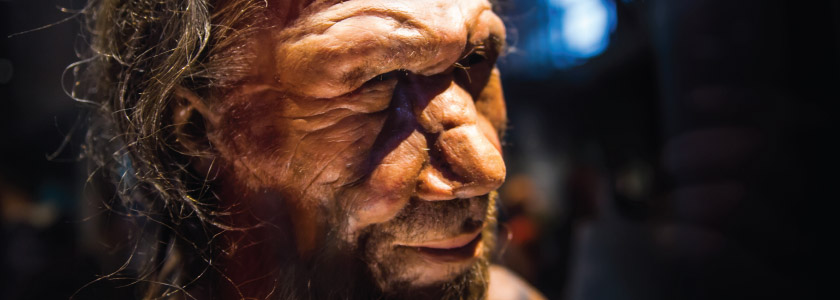 DNA reveals mysteries of ancient humans hero image
