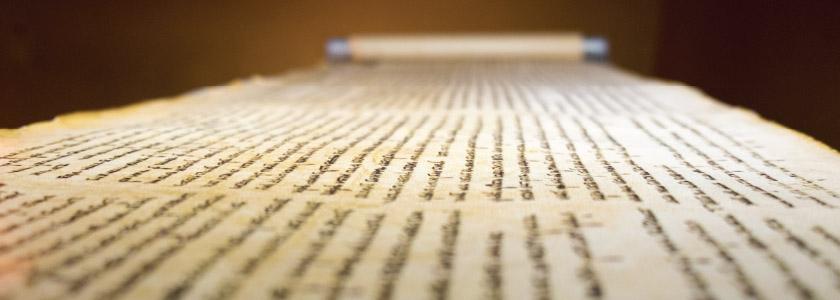 Using DNA fingerprints to explore the Dead Sea Scrolls hero image