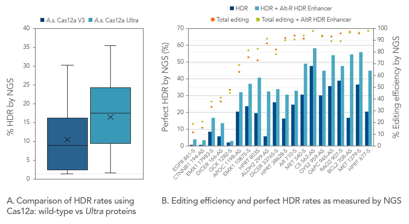 High HDR rates with Alt-R Cas12a Ultra protein and HDR Enhancer