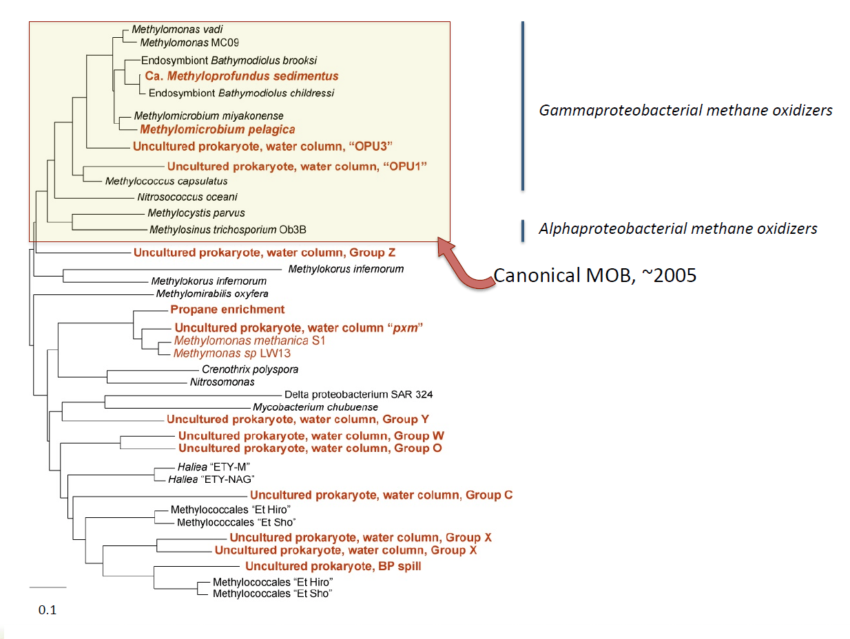 art81-YR-Tavormina-Fig6