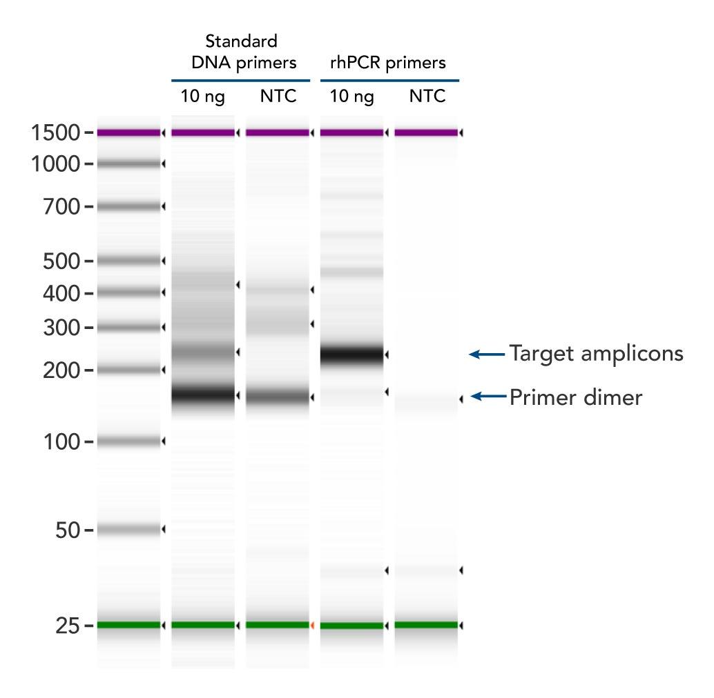 d-pcr17cc-rhampgenotyping-f3