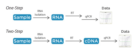 Starting with RNA—one‑step or two‑step RT‑qPCR?