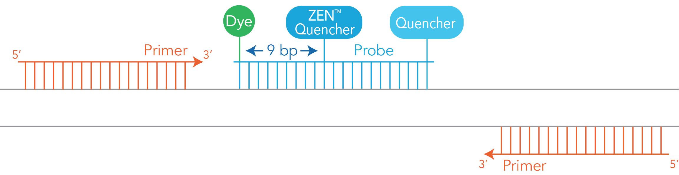 DOart57-PT-Dye Quencher-Fig3A_Zen