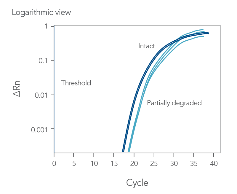 Amplification curves with delayed Cq values