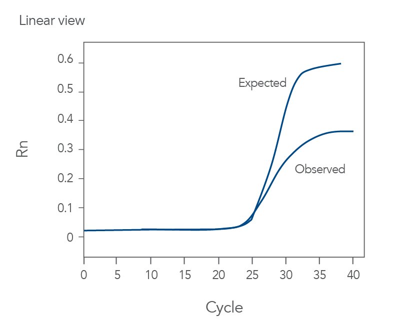 qPCR amplification curves of low height