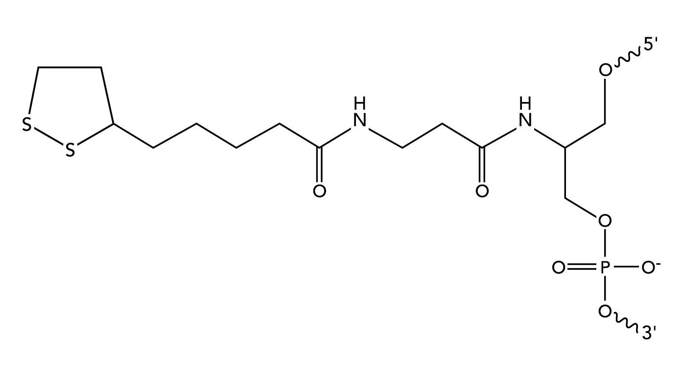 Figure5_Internal dithio serinol