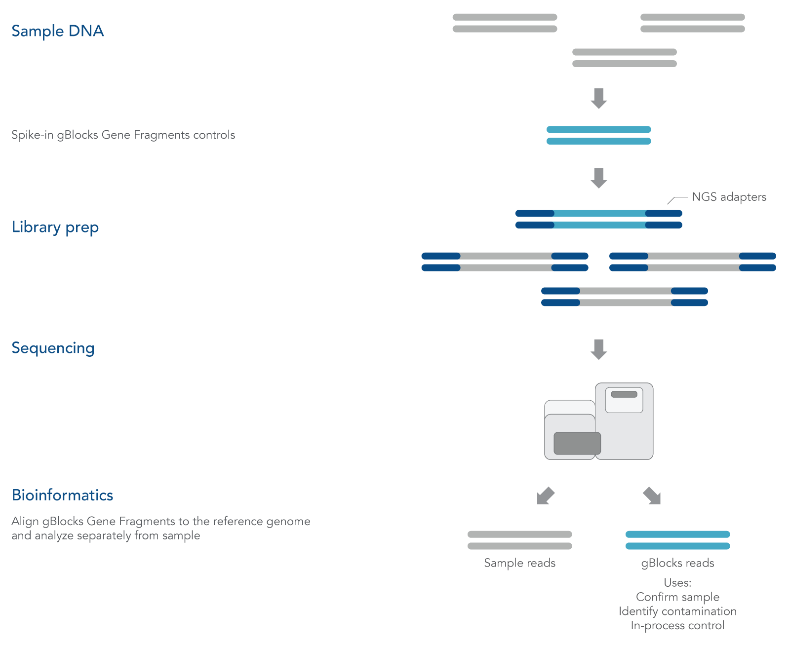 gBlocks Gene Fragments are spiked into a next generation sequencing workflow.