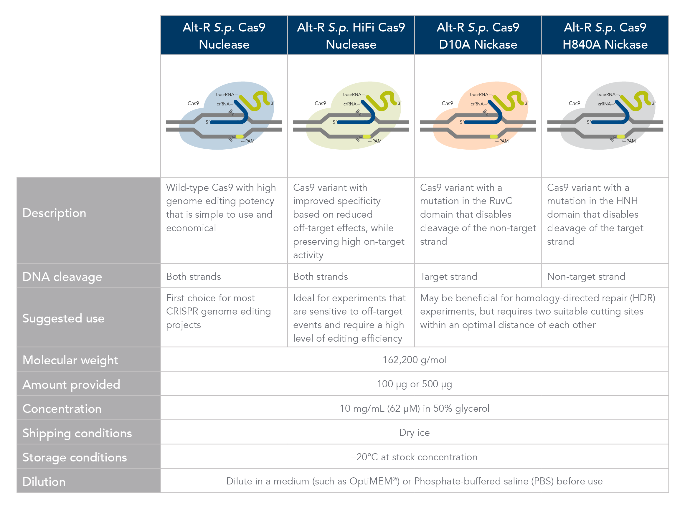 Comparison of Alt-R Cas9 nucleases and nickases.