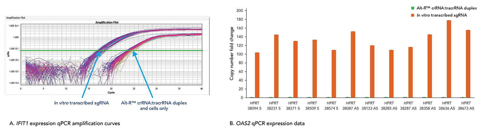CRISPR_cas9_perf_fig_6