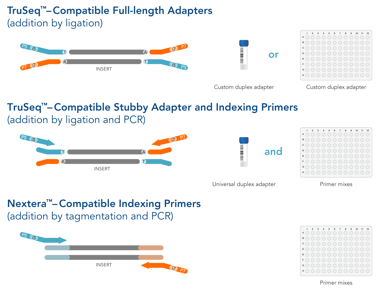 TruSeq- and Nextera-style structures available as IDT Custom NGS Adapters.