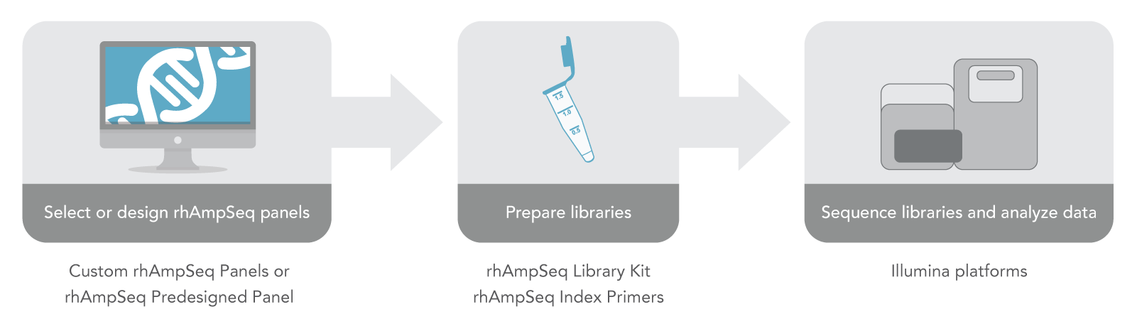 rhAmpSeq-Workflow-and-Components