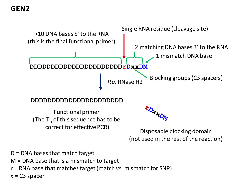 rhprimer-gen2-design