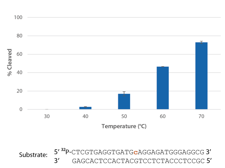 Graph: RNase H2 is active over a broad range of temperatures