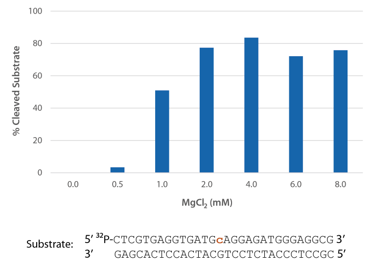RNase H2 is active over a broad range of Mg2+ concentrations