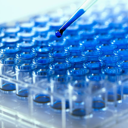 blue tray with pipette
